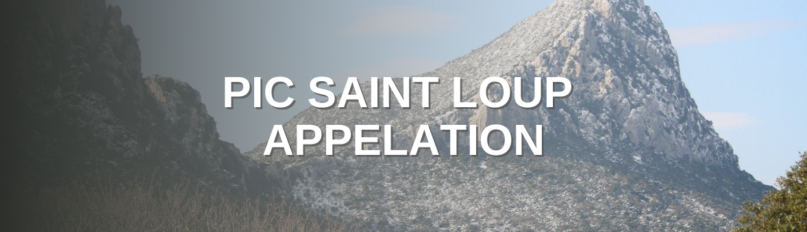 Pic St Loup Appellation - Home To Some Of The Finest Languedoc Wines